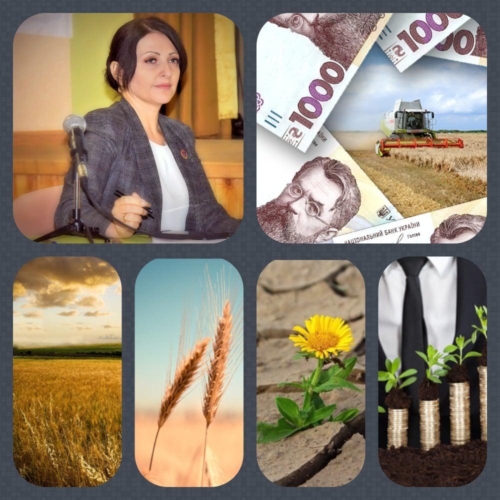 13 жовтня в аграріїв Одещини значно поліпшився настрій